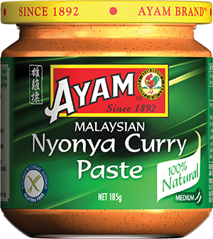 2D-nyonya-curry-paste