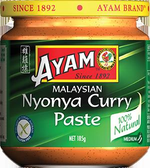 2D nyonya curry paste